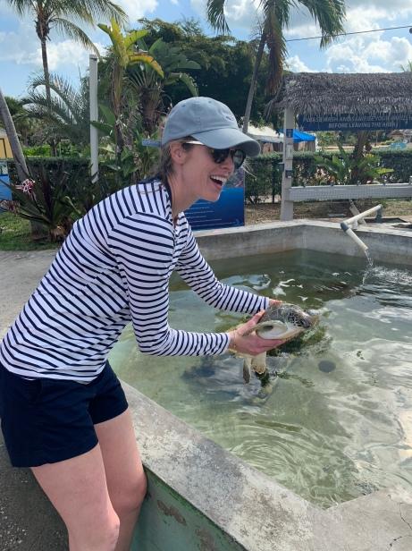 turtle farm (4)